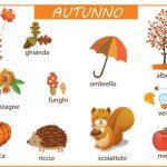 Le parole e i disegni dell'autunno - scuola primaria -