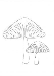 fungo in bianco e nero Disegni autunno per bambini DISEGNI SULL'AUTUNNO DA STAMPARE A COLORI E IN BIANCO E NERO