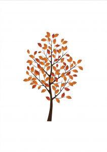 albero Disegni autunno per bambini DISEGNI SULL'AUTUNNO DA STAMPARE A COLORI E IN BIANCO E NERO