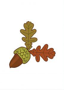 ghianda a colori Disegni autunno per bambini DISEGNI SULL'AUTUNNO DA STAMPARE A COLORI E IN BIANCO E NERO