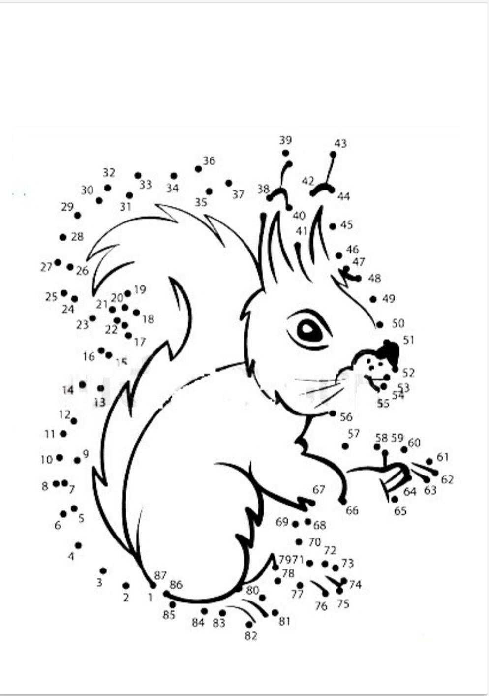 Matematica creativa con ghiande e scoiattoli (schede matematica classe seconda)