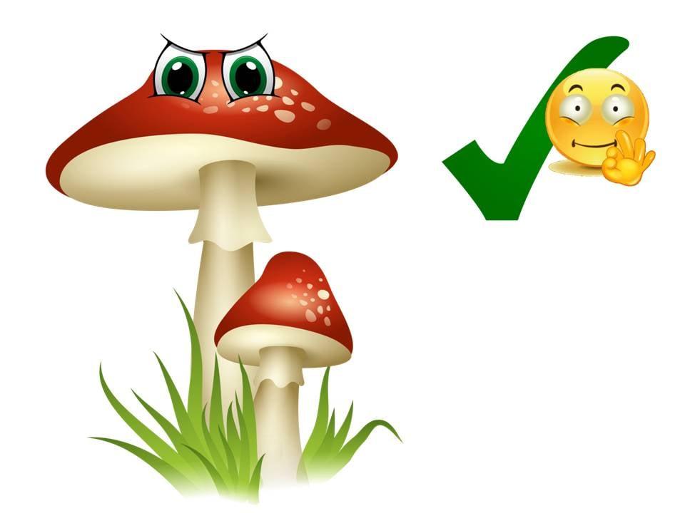 Comprensione del testo: il bosco in autunno con il fungo Chiodino